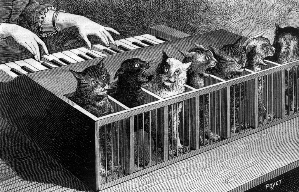 Poyet cat piano